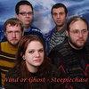 Steeplechase Cover Art