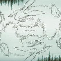 Wild Race cover art