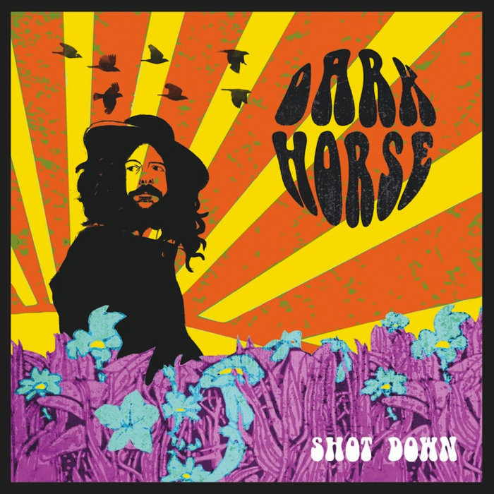 Shot Down - Dark Horse