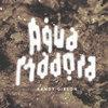 """Aqua Madora V-ii-2008 21:07:26"""" - 21:54:40"""" (NYC) Cover Art"""
