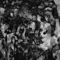 Resonators (1) cover art