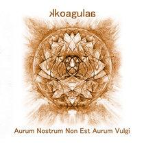 Aurum Nostrum Non Est Aurum Vulgi // Impressions of Ardour cover art