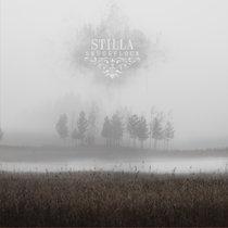 Skuggflock cover art