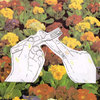 stealing flowers from the neighbor's lawn Cover Art
