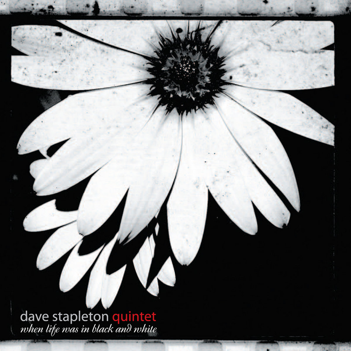 when life was in black and white 50 off dave stapleton