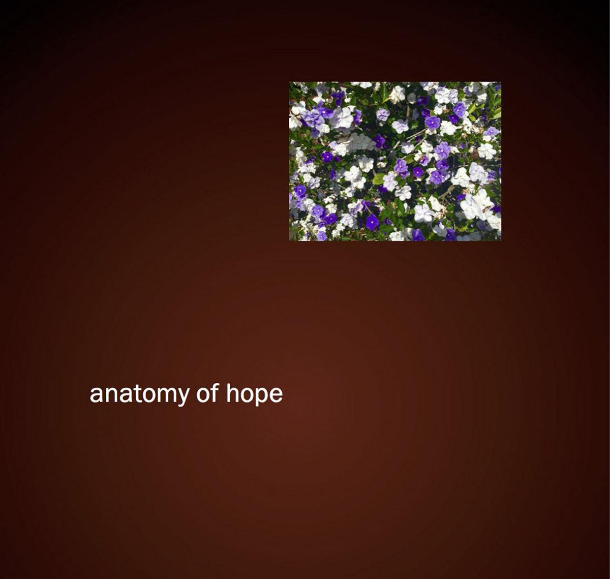 Unplug And Release Anatomy Of Hope