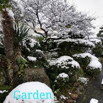 Garden cover art