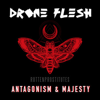 Antagonism & Majesty by Drone Flesh