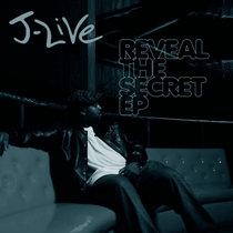 Reveal The Secret (Instrumentals) cover art
