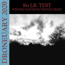 Winter Clouds in Winter Trees cover art