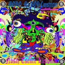 Nosaj Tsenre Llebpmac / MOYO, My BOY Constrictor Split cover art
