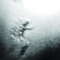 Saule cover art