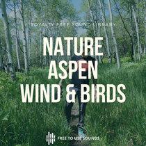 Nature Sounds Wind Birds Aspen Trees, Colorado cover art