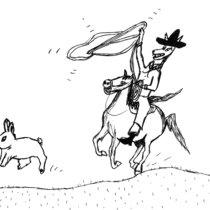 Bunny Run - Monthly Mystery #11 - November cover art