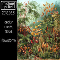 Live at Flowstorm 2018 cover art