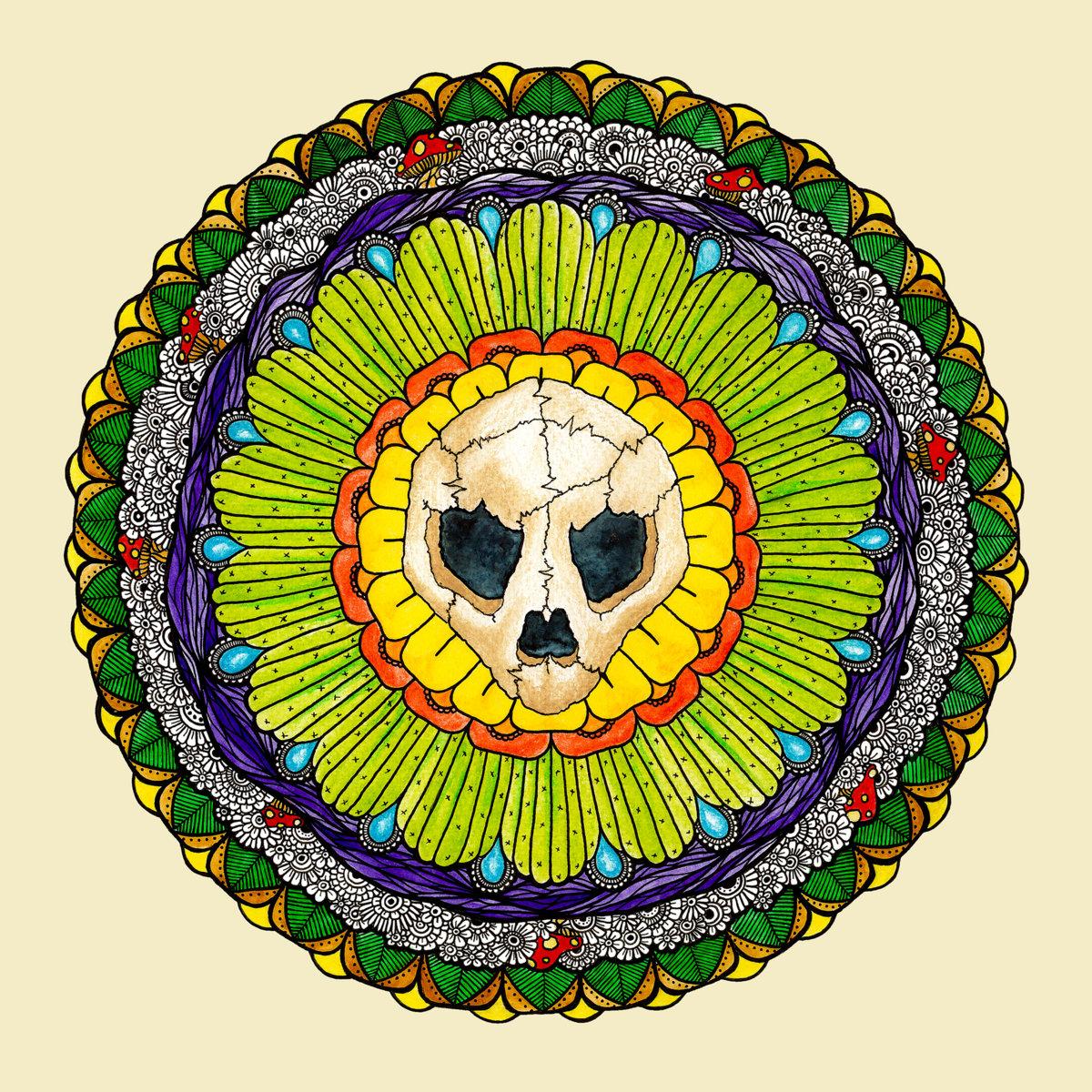 Turtle Skull | Turtle Skull