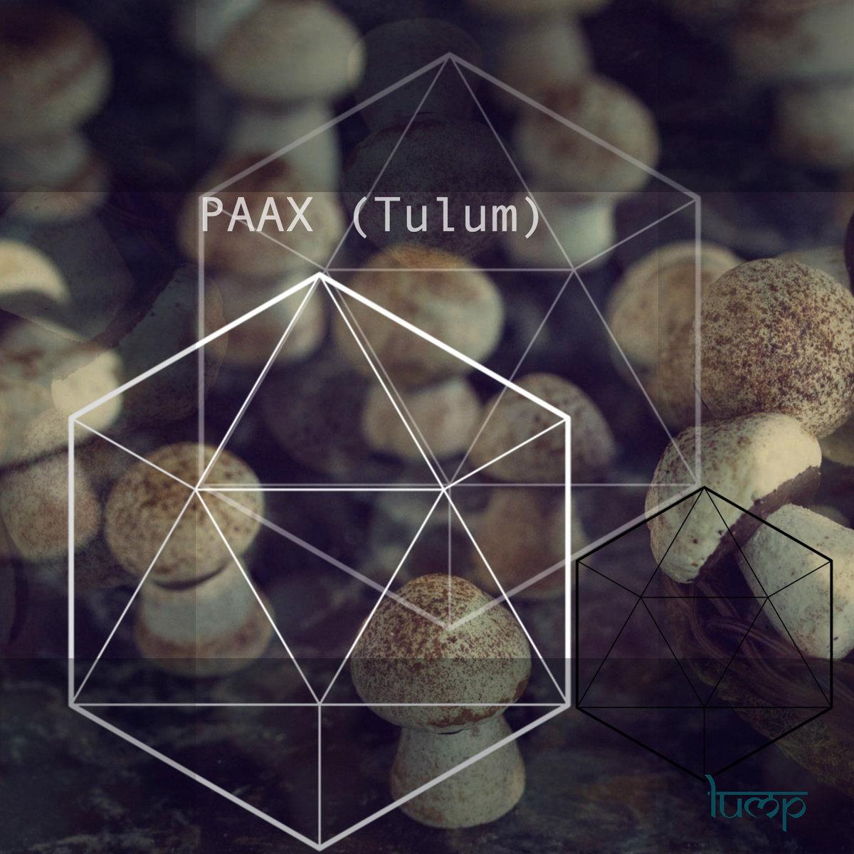 Chambao la danza del tiempo (paax. Tulum edit) [freedl] | lump.