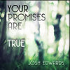 Your Promises Are True Cover Art