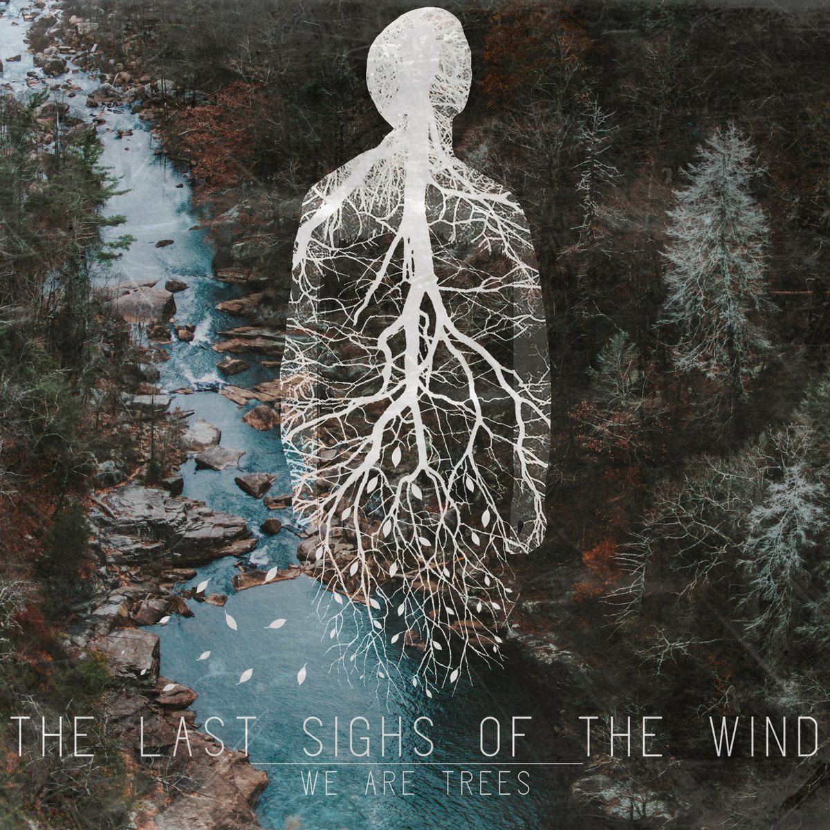 We Are Trees | The Last Sighs Of The Wind