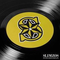 ZimZima- Predator cover art