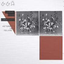 Heteroticisms Volume 4: Aidan Baker X Lärmschutz (Land animal tapes records) cover art