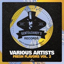 VA - Fresh Flavors Vol. 2 cover art