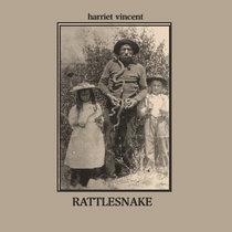 Rattlesnake cover art