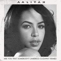 Aaliyah - Are You That Somebody? (Amerigo Gazaway Remix) cover art