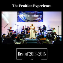 The Fruition Experience (Best of 2013-2016) Live cover art