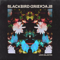 Love Unlimited - Single cover art