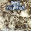 Why Anything? Cover Art
