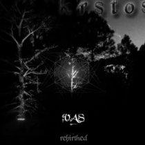 VAS - Rebirthed cover art