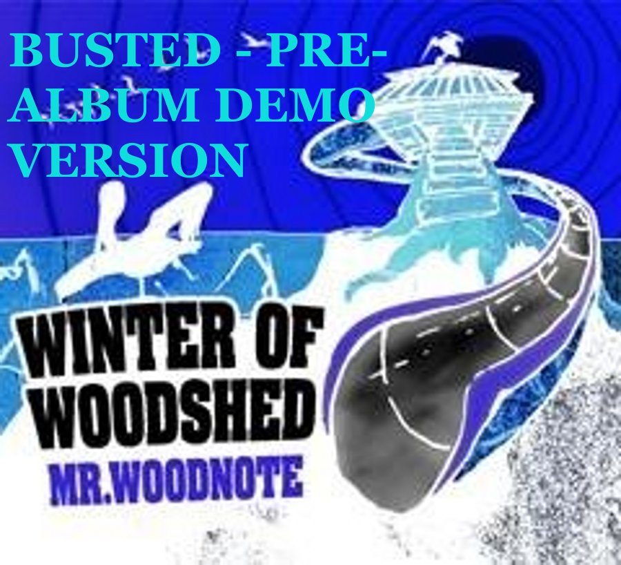 mr woodnote winter of woodshed