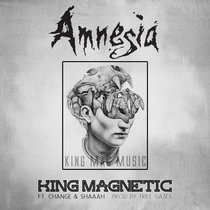 Amnesia (ft. Change and Shaaah) cover art