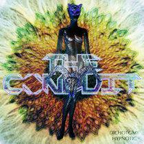 Dichotomy Hypnotic cover art