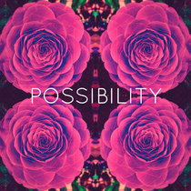 Possibility cover art