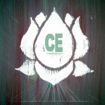 Lotus cover art