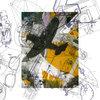 LAST COPIES The Sediment Club - Psychosymplastic Cover Art