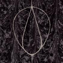Hazel Steps Revisited cover art