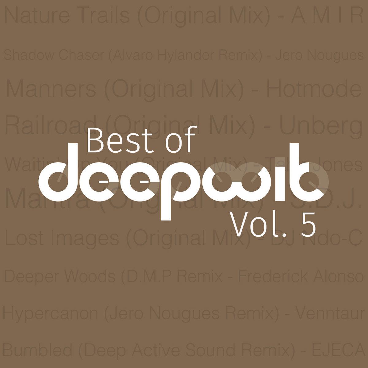 Deeper Woods (D M P Remix) | DeepWit Recordings