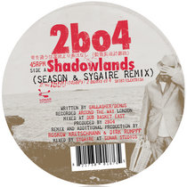 Shadowlands & Junkyard Gods Remixes cover art