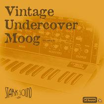 Vintage Undercover Moog Vol. 2 cover art
