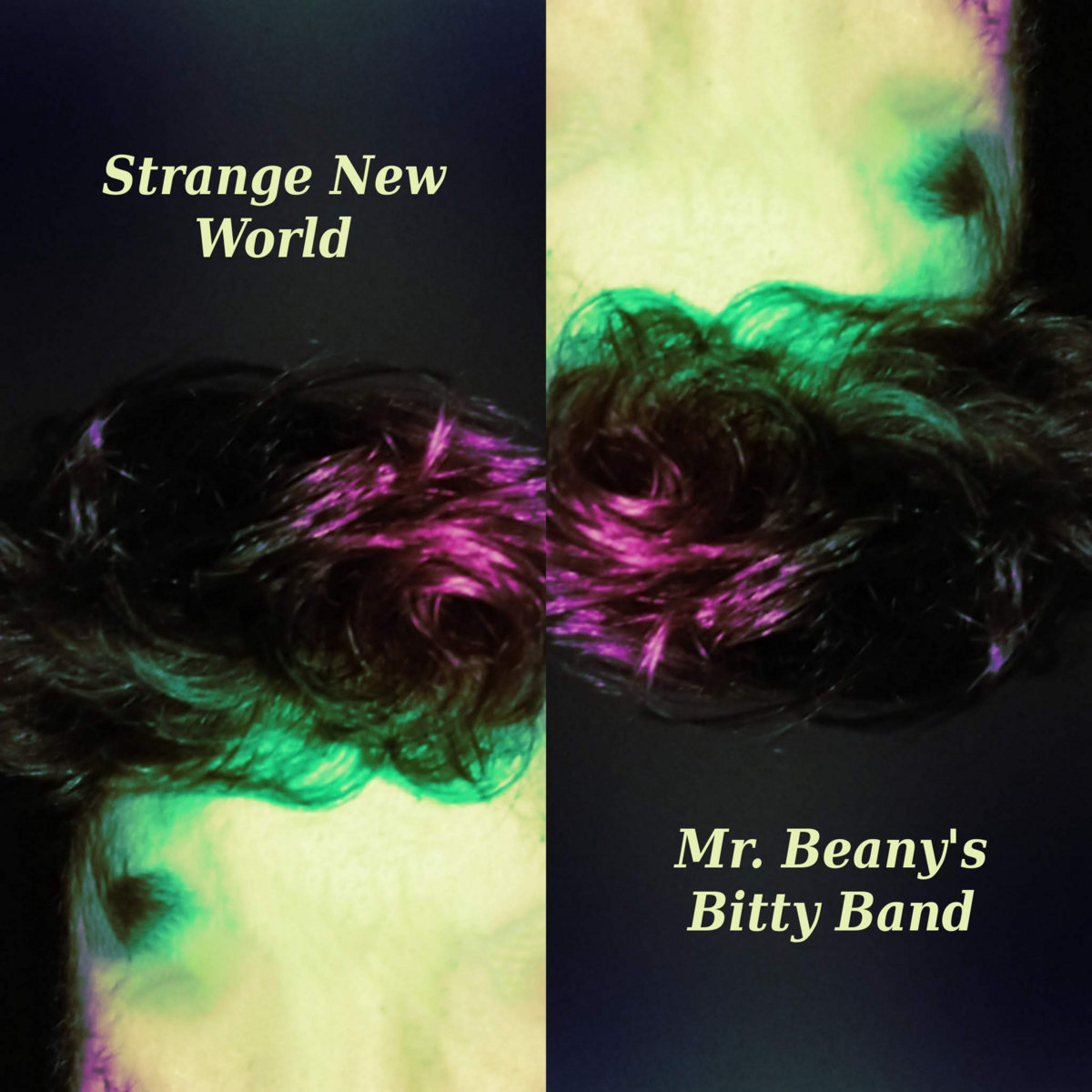 Strange New World | Mr  Beany's Bitty Band