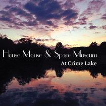At Crime Lake cover art