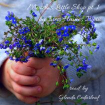 Bedtime Story: Maida's Little Shop Pt 1 cover art