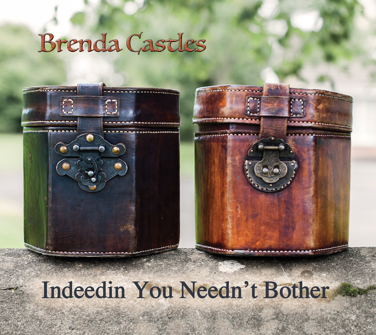 Indeedin You Needn't Bother-Puzzle Saw Jig | Brenda Castles