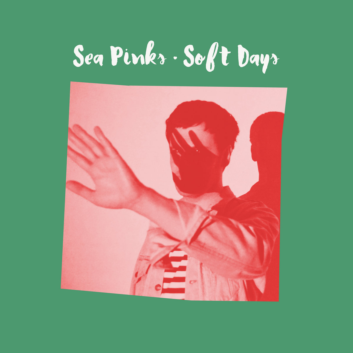 Sea Pinks : Best Ever Albums