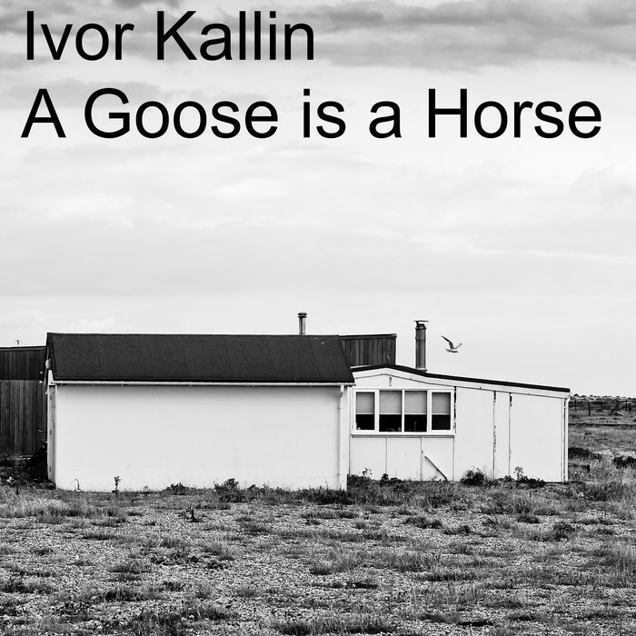 A Goose is a Horse, by Ivor Kallin