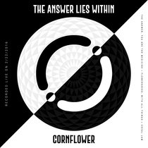 The Answer Lies Within [Live] cover art