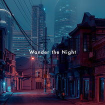 Wander The Night cover art